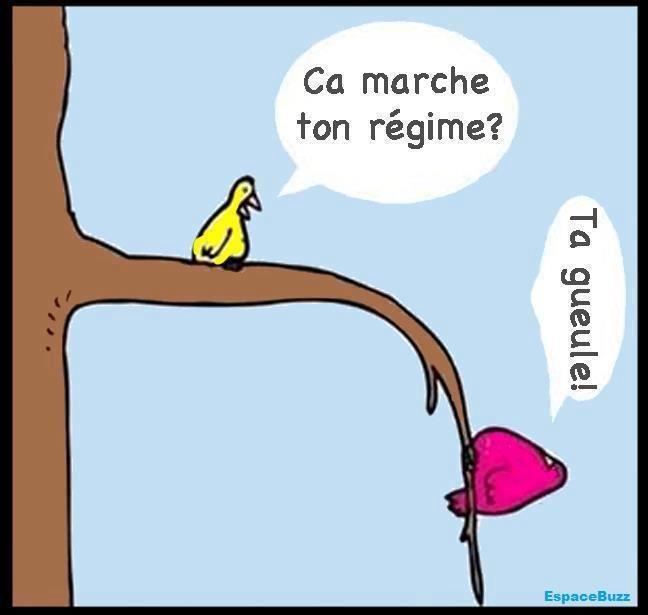 régime ?! #dessin #humour