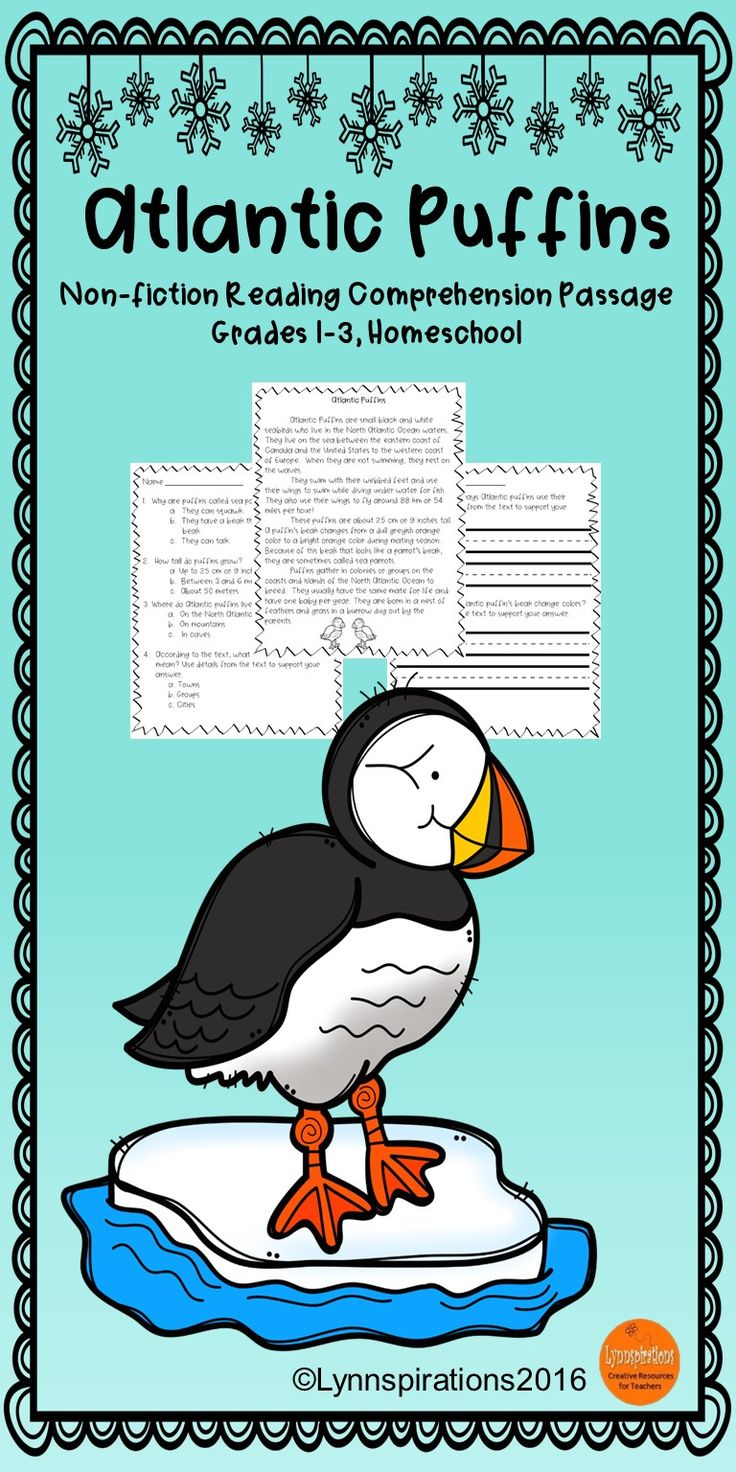 This Atlantic Puffins Readingprehension Passage For Grades 13 Can Be  Used In Your