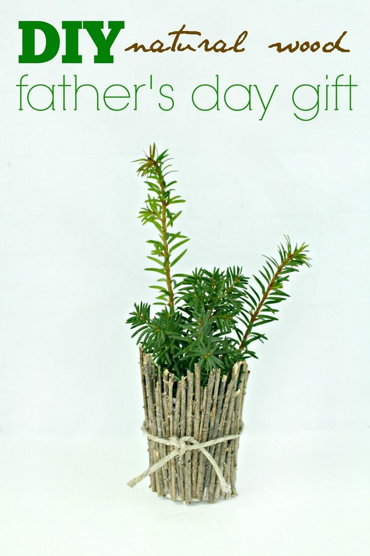 16 best For Dad Father\'s Day and All Year Round images by Lauras ...
