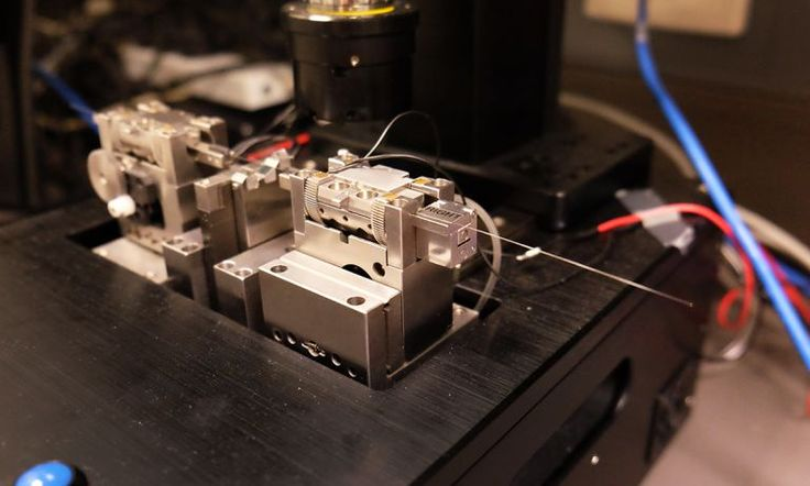 #Perth #Researchers Developed the World's Smallest #Microscope   Particle    The device uses a technology called Optical Coherence Tomography (OCT). OCT measures where light is bouncing, reflecting and scattering inside the tissue. The needle emits a beam of light. The way that light beam reflects and scatters in the tissue helps build an image of what's going on inside.