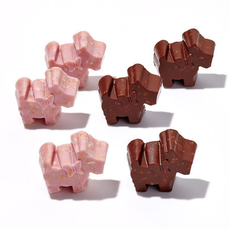 2つの味わいを楽しめるテリアモチーフのチョコレート。【バレンタインデー届け専用】ココテリア クランチミックス(ミルク&イチゴ)