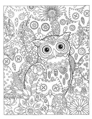 Creative Haven Owls Colouring Book by Marjorie Sarnat ~ Hidden-Hoots