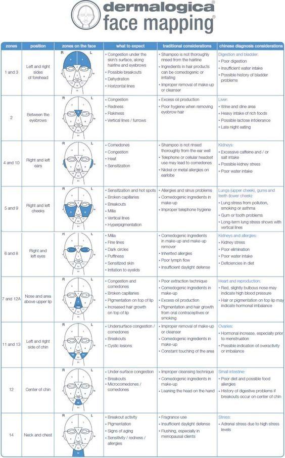 Dermalogica Face Map  Face Mapping, Facial Skin, Skin Care-2479