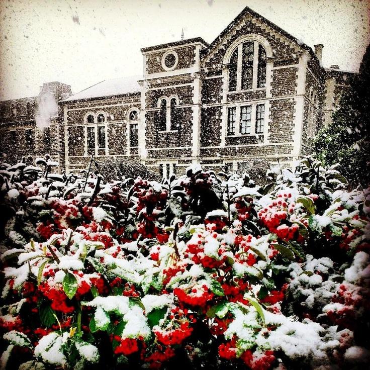 Bosphorus University