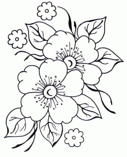 RISCOS PARA BORDAR FLORES: White Flower, Embroidery Patterns, Embroidery, Embroidery Flowers, Risks, Flower Coloring Pages, Design, To Embroider