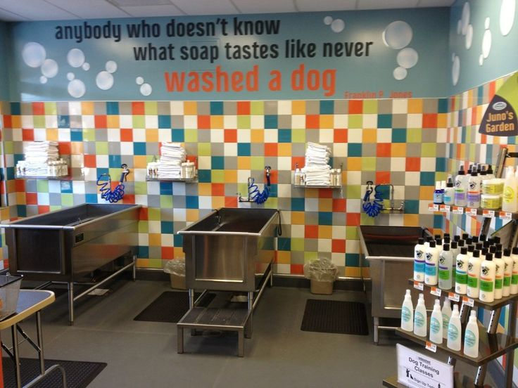 31 best unleashed by petco branding images on pinterest baby unleashed stores take a tip from starbucks becoming not just a place to buy something but a place to do something by making the decor friendly and solutioingenieria Images