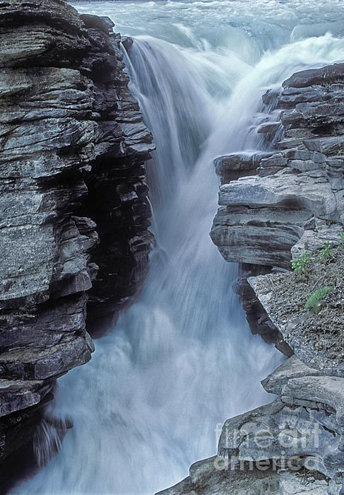 ~Kicking Horse River, Yoho National Park, Canada~