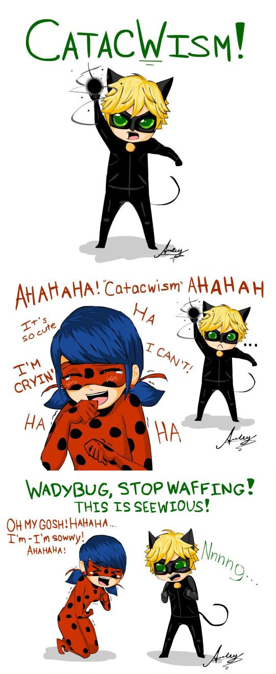 Miraculous Ladybug Adrien Gets Turned Into A Cat