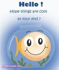 Hello! Popping in to wish you ALL a productive, satisfying, happiness-inducing, life-giving, joyful & inspired week!