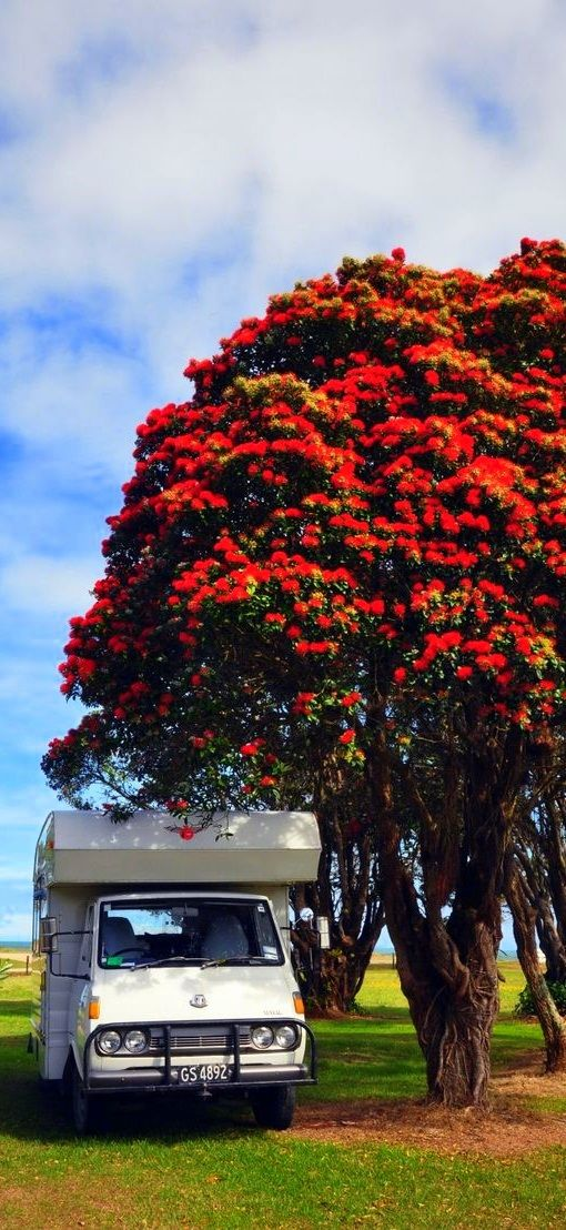 Summer is a favourite season for campervan hire New Zealand