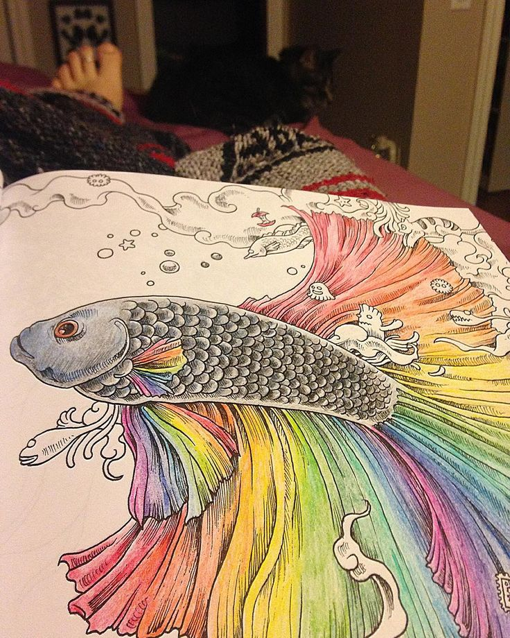 If Only Bettas Were This Colourful IRL Adultcolouringbook Colouring Colour Animorphia