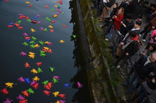 Un tuffo dartista colora i Navigli: in acqua cinquemila rane colorate