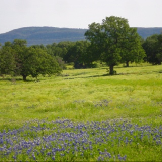 Hill country of Texas!