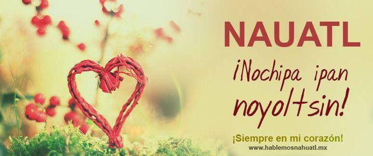Palabras y Frases en Nahuatl Archives - Hablemos Náhuatl - Ma Tikamatikaj Nahuatl