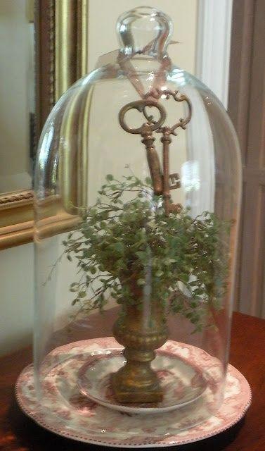 Plant under glass