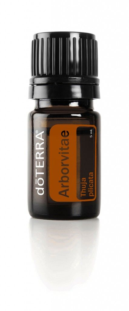 doTERRA Arborvitae Essential Oil Uses - It is a very special oil and is unique to doTERRA because of a special agreement and doTERRA is the only ones in the entire world to have it.