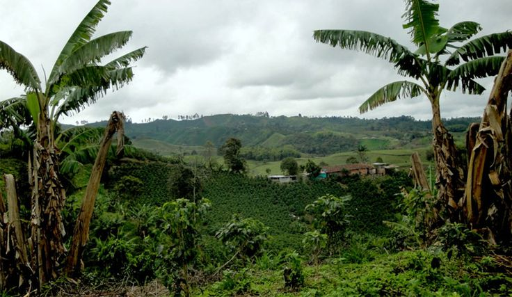 Uncover Colombia Blog | Famous Places to Visit in Colombia