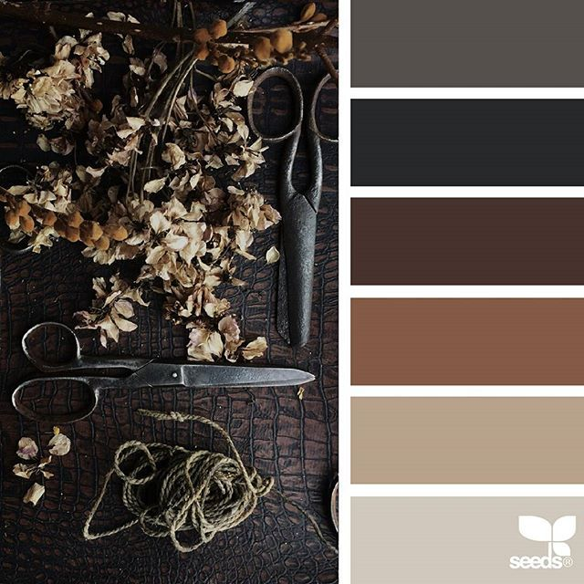 today's inspiration image for { foraged tones } is by @the_warehouse_at_woodside ... thank you, Sarah, for sharing your incredible photo in #SeedsColor !