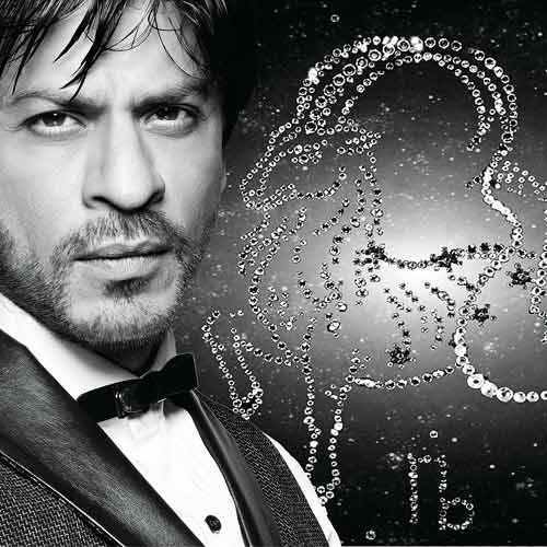 dna celebrity column: When KKR won, it was like the song 'I believe I can fly' I could have flown that night: Shah Rukh Khan | Latest News & Updates at Daily News & Analysis