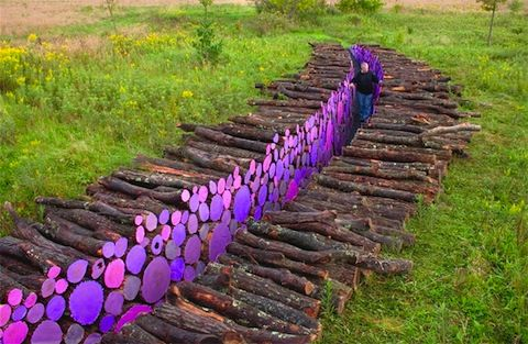 Michael McGillis channeled his inner Log Lady and created a wooden walkway at the Franconia Sculpture Park in Shafer, Minnesota. The structure was made from a 95-foot long path of trees painted purple. It's subtle enough to be a believable quirk of nature.