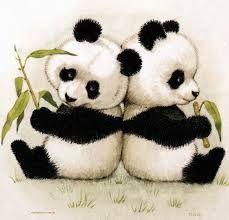 Resultado de imagen para oso panda bebe