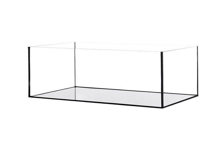 Aquariumbecken Glas Becken Glasaquarium 60x20x20cm Süß- u. Salzwasser 24 Liter in Haustierbedarf, Fische & Aquarien, Aquarien | eBay!