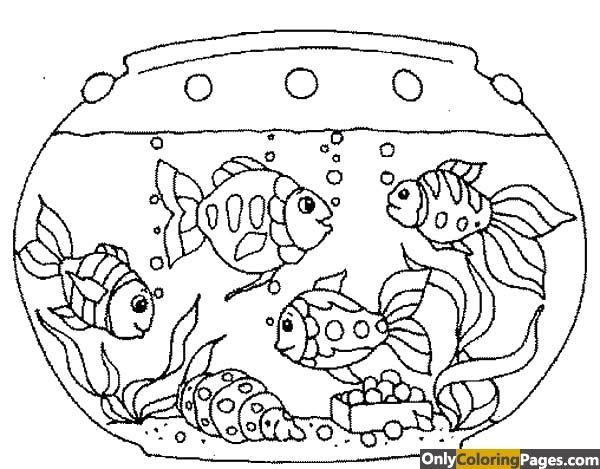 Fish Tank Coloring Pages Fish Coloring Page Fish Tank Drawing Coloring Pages