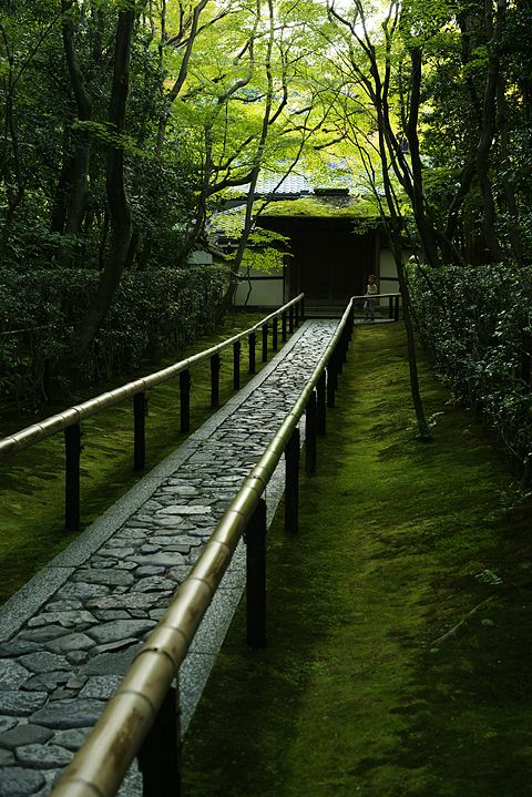 """Kyoto, Japan ////The serenity implied here is enough to encourage travel空間の中に広がり充ちる""""影""""に緑の色が溶け込んでるのが良い。空間観が現れている。"""