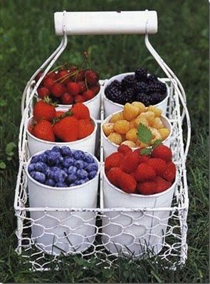 Country Style Chic: Health Food, Summer Gardens, Company Picnics, Summer Picnics, Desserts Idea, Chicken Wire, Wire Baskets, Fruit Display, Finger Food