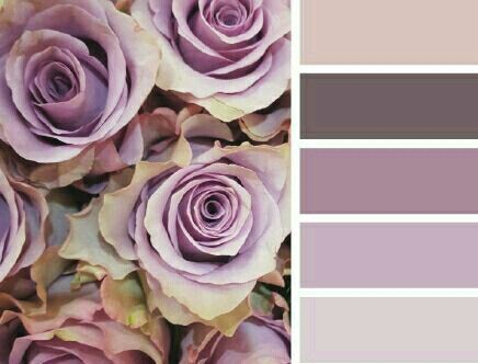 Beautiful color scheme!
