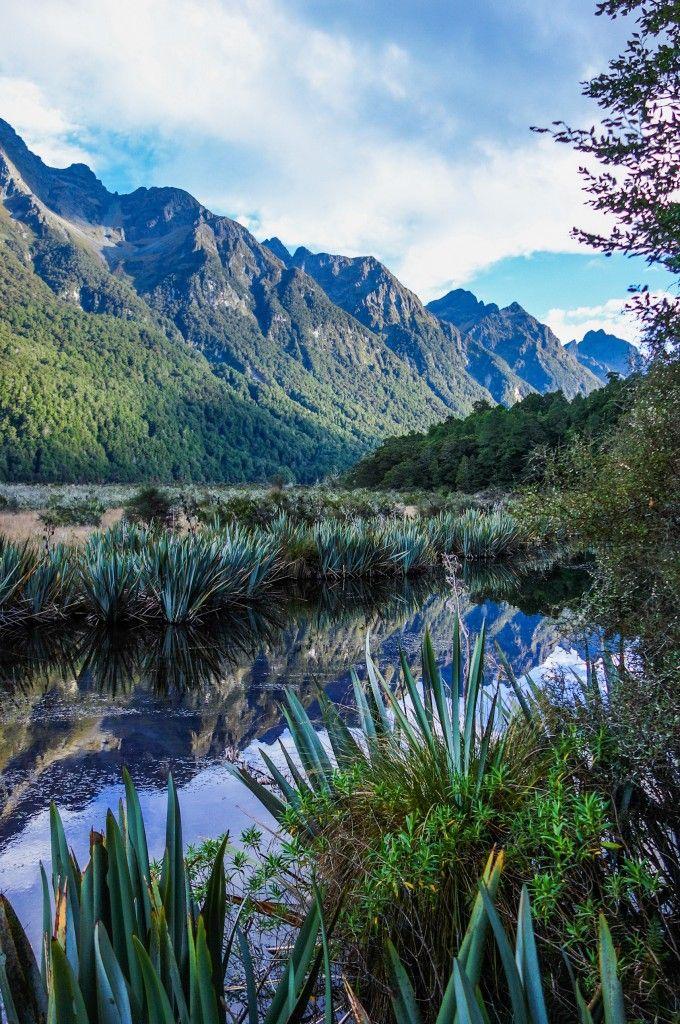 Aux alentours du Milford Sound en Nouvelle-Zélande