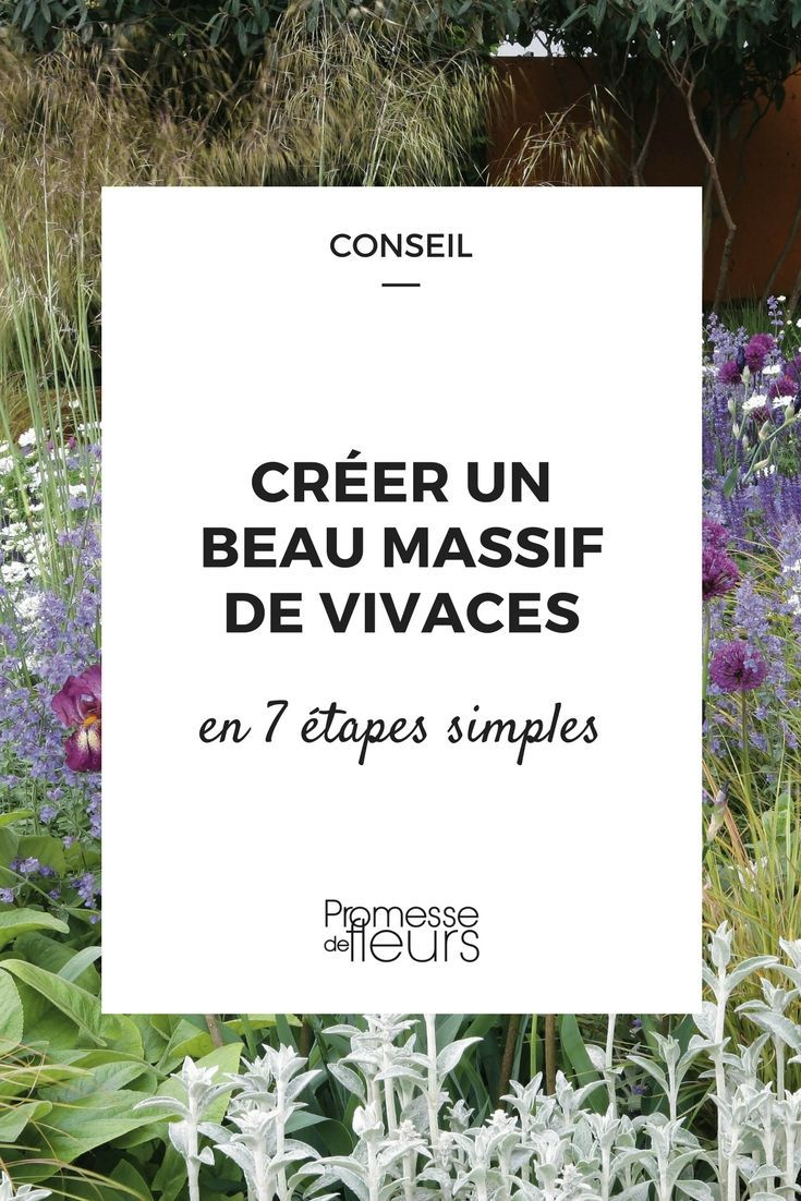 Easy Methods To Create A Phenomenal Massif Of Perennials Massif Fleurs Parterres Et Jardins De Vivaces