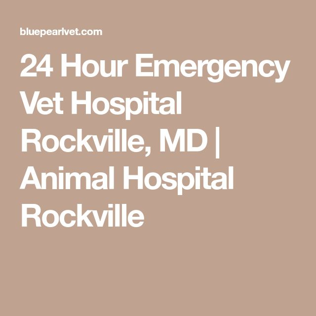 Veterinary Specialists Of Ct 24 Hour Emergency Hospital In West