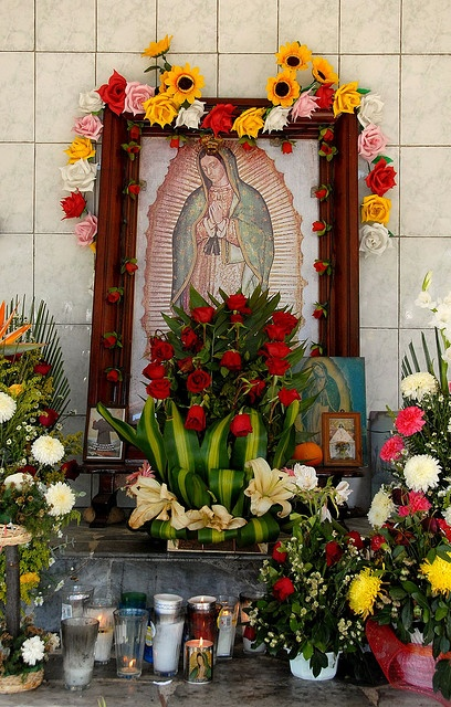 Guadalupe Altar Veracruz ~ This roadside shrine dedicated to the Virgen de Guadalupe is located near Martinez de la Torre in Veracruz state Mexico ~ by Ilhuicamina via flickr