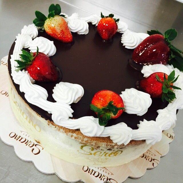 Chocolate & vanilla mousse cake!!!emoji#chocolate #chocoholic #vanilla #cake #fresh #greekbakery #seranobakery #Toronto #bakery