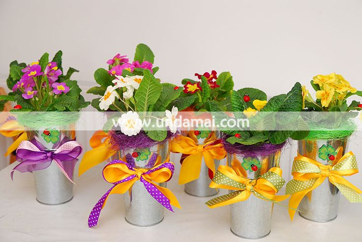 Aranjament floral 1-8 Martie cu primule in galetusa decor
