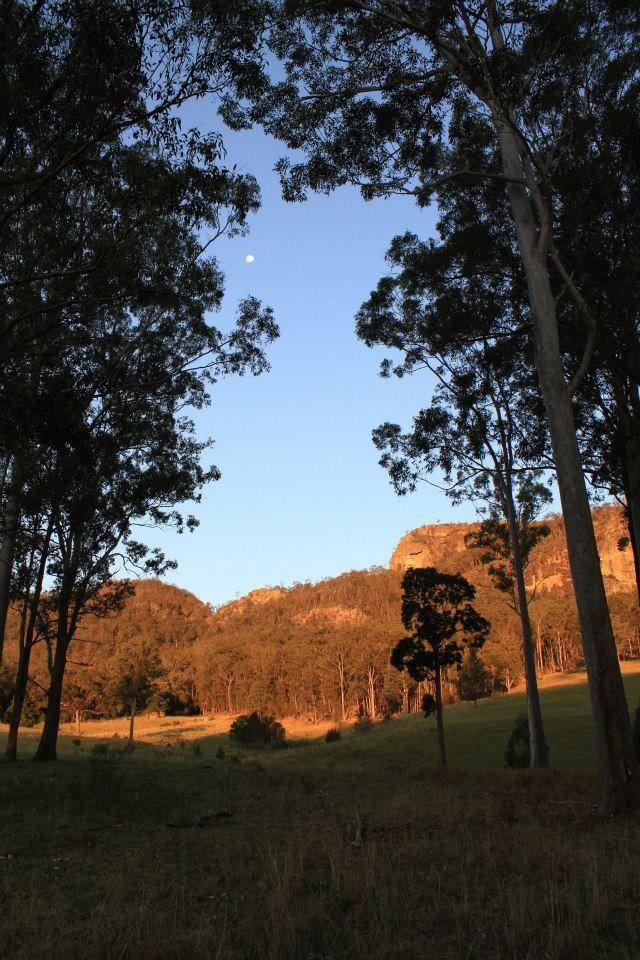 Bucketts Mountain Range Barrington NSW kids family animals farm river holiday accommodation cottage farmhouse farmstay https://www.facebook.com/pages/MANSFIELD-COTTAGE-BARRINGTON-Barrington-Tops-Holiday-Accommodation/341811962165 E - jill.perram@bigpond.com