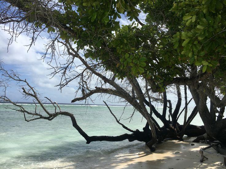 West Island Beach at Cocos Island