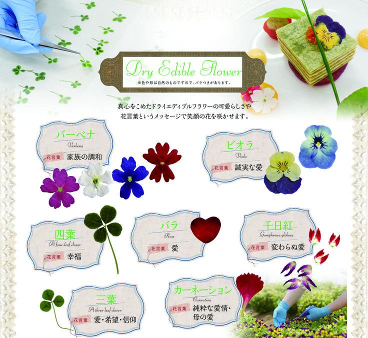 乾燥食用花 ドライエディブルフラワーの通販店 | Tom-Store