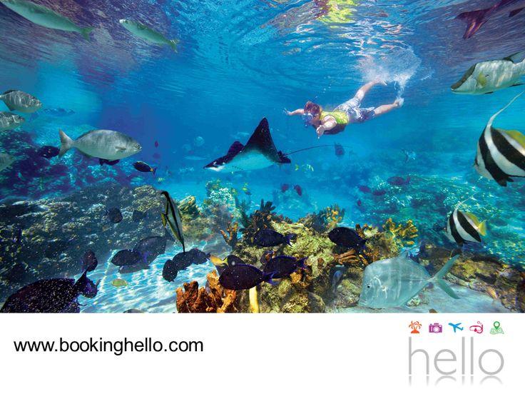 LGBT ALL INCLUSIVE AL CARIBE. Cancún es uno de los lugares que recibe más visitantes en el mundo. Sus playas, entorno natural, cultura e historia, lo posicionan como uno de los mejores destinos para vacacionar, gozar de la relajación y de una extensa lista de actividades turísticas. En Booking Hello te invitamos a adquirir tu pack all inclusive al Caribe mexicano, para escaparte con tu pareja a vivir un viaje fantástico. #BeHello