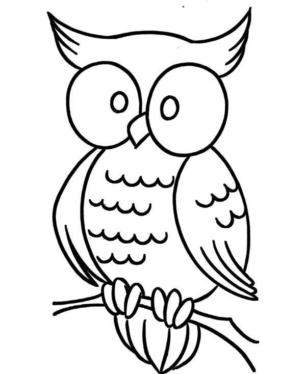 Owl Large Eye Owl Coloring Page Jpg Owl Coloring Pages Owl Drawing Simple Cartoon Coloring Pages