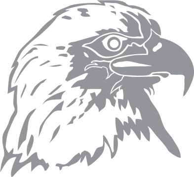 Glass etching stencil of Bald Eagle Profile. In category: Birds of Prey