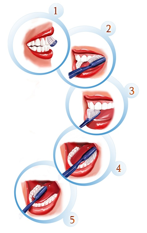 Did you know that only 20% of the population brush their #teeth the right way?