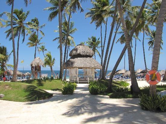 Best 20 Punta Cana Map Ideas On Pinterest