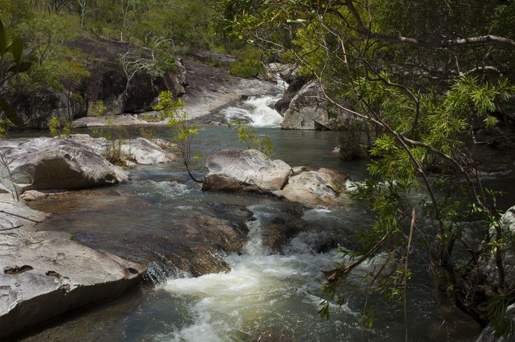 View of Davies Creek from one of the upper camp sites