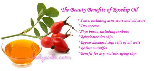 the benefits of rose hip seed oil before and after photos   The Beauty Benefits of Rosehip Oil ...