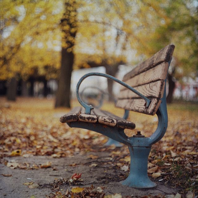 Something about a park bench...