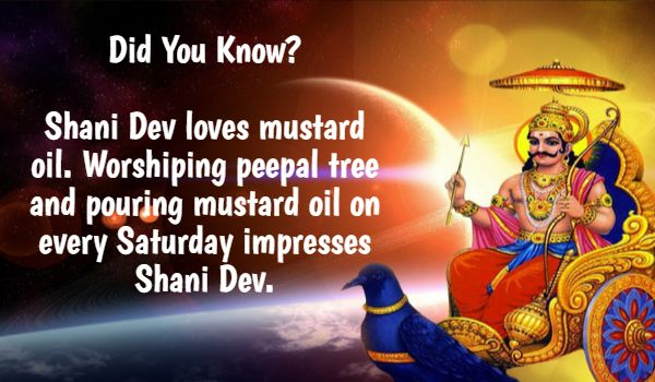 #DidYouKnow? Shani Dev loves mustard oil. Worshiping peepal tree and pouring mustard oil on every Saturday impresses Shani Dev. #BringHomeFestival