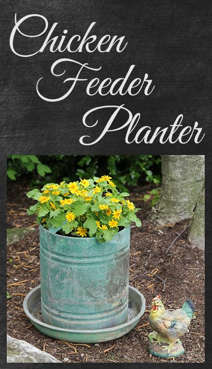 Chicken feeders {I've used an old chicken feeder for years as a planter; I like the way that this one is 'aged'.}