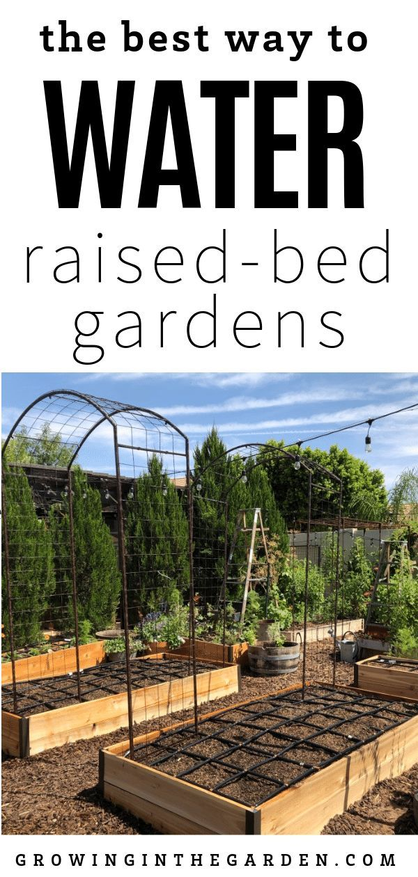 Best Way To Water Raised Bed Gardens Watering Raised 400 x 300
